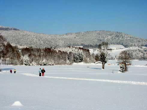 Wintererlebnis beim Langlauf in der Loipe Achslach-Wolfertsried-Lindenau
