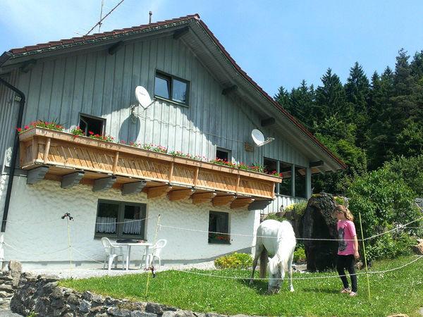 Blick auf den Pferdehof in Grün bei Achslach im ArberLand Bayerischer Wald