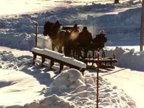 Romantische Pferdeschlittenfahrt bei Achslach