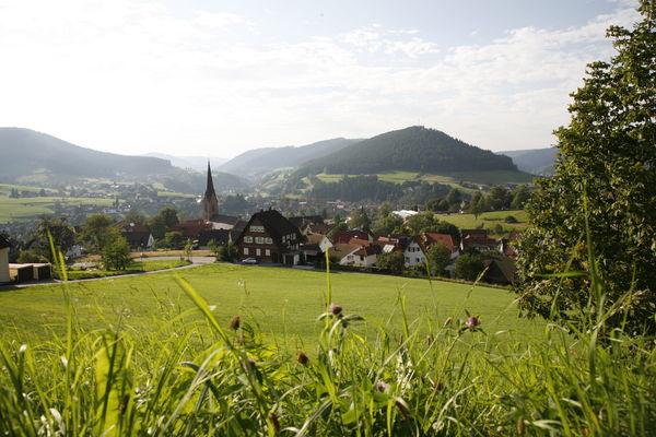 Ortsansicht von Baiersbronn
