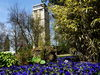 Hindenburgturm im Blumengarten