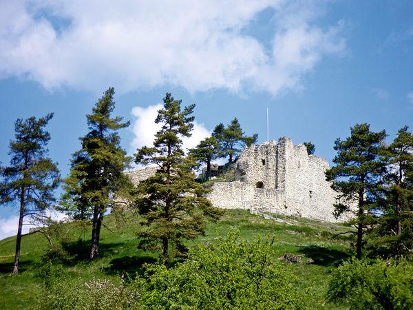Burgruine Lichtenegg, Birgland
