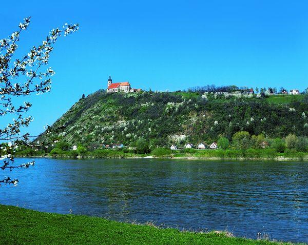 Blick über die Donau zur Wallfahrtskirche auf dem Bogenberg