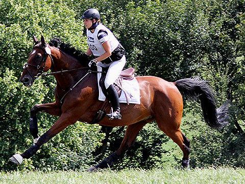 Ausbildung für Pferde und Reiter bei Mangelkramer
