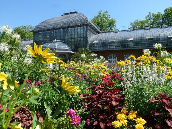 Nizza Gardens Frankfurt Botanical Garden Frankfurt