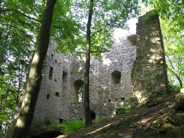Burgruine Roßstein, Hohenburg