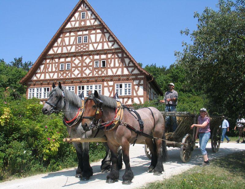 Beste Spielothek in Neuhausen ob Eck finden