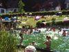 piscine naturelle ottenhofen