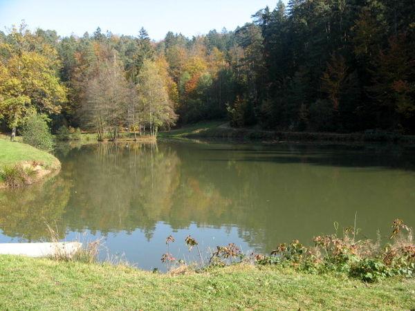 Angelmöglichkeit am Saldenburger See im Ilztal und Dreiburgenland