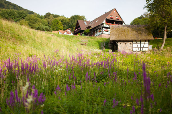 Straubenhofmühle