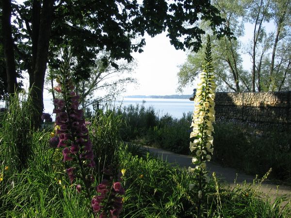 Uferpark in Überlingen am Bodensee