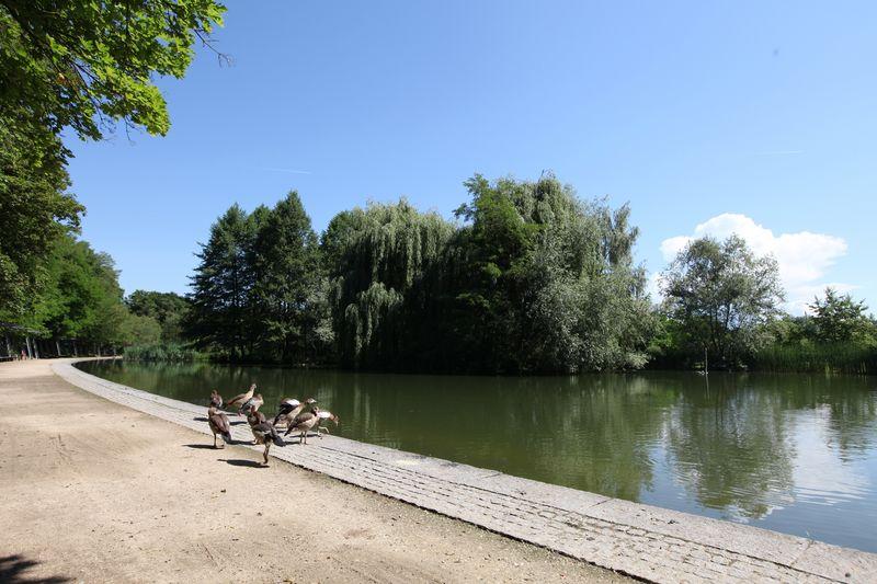 Weil Am Rhein Hotels Und Pensionen