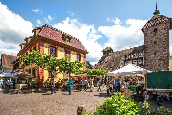 Zell Am Harmersbach Urlaubsland Baden Württemberg