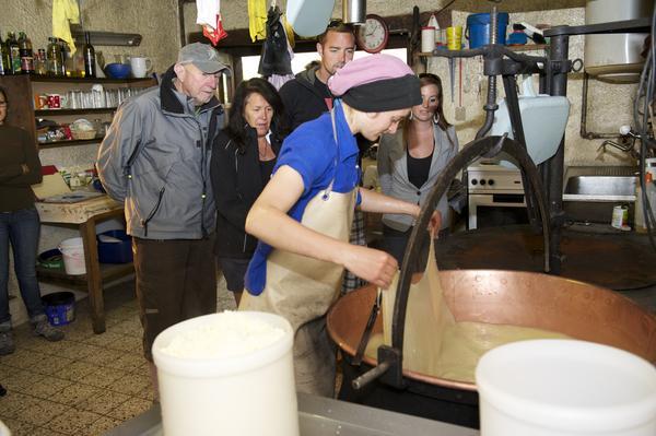 Die Sennerei Stafel verarbeitet in den Sommermonaten täglich die Milch der Kühe, die in der Umgebung grasen.