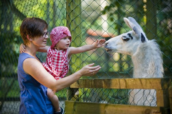 Famiienausflug in den Vogel und Tierpark Abensberg