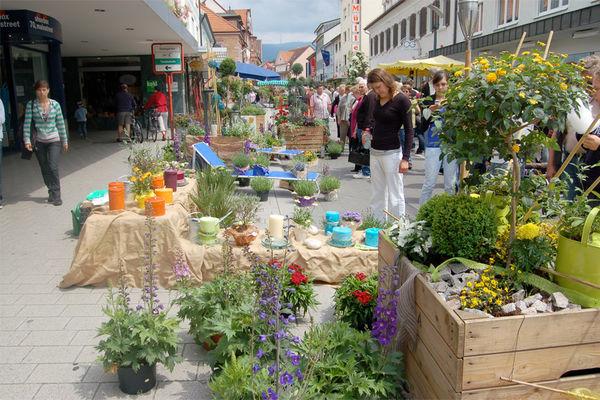 Bauernmarkt im Frühjahr