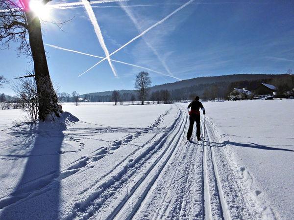 Langlaufen in Achslach im Bayerischen Wald
