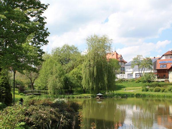 Dorfweiher in Adelmannsfelden