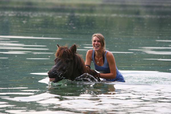 Islandpferd im Wasser