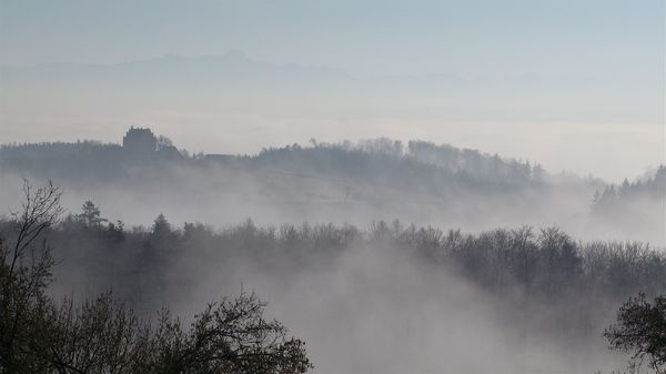 Schloss Freudental im Nebel