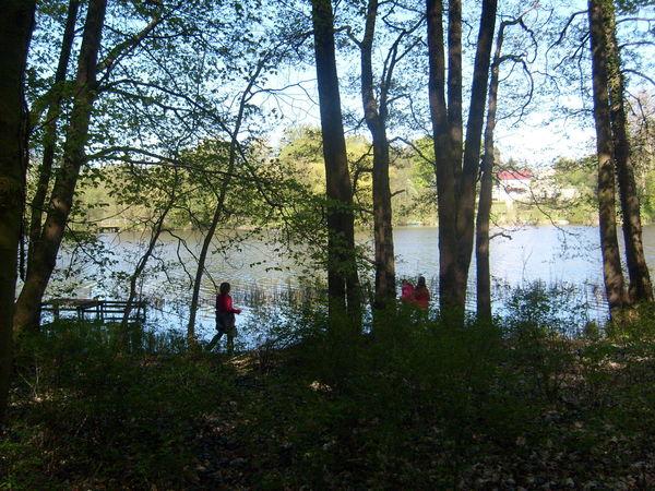 Schlosssee Alt Zeschdorf, Foto: Info-Punkt Lebus
