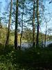 Aalkasten in Alt Zeschdorf, Foto: Info-Punkt Lebus