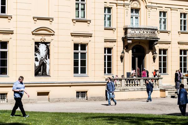 Oderbruch Museum Altranft, Foto: Alex Schirmer