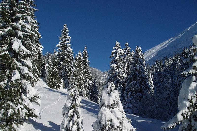Altschen - Schneeschuhtour
