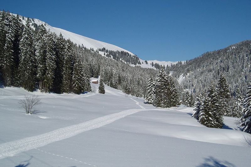 Egg - Schneeschuhtour