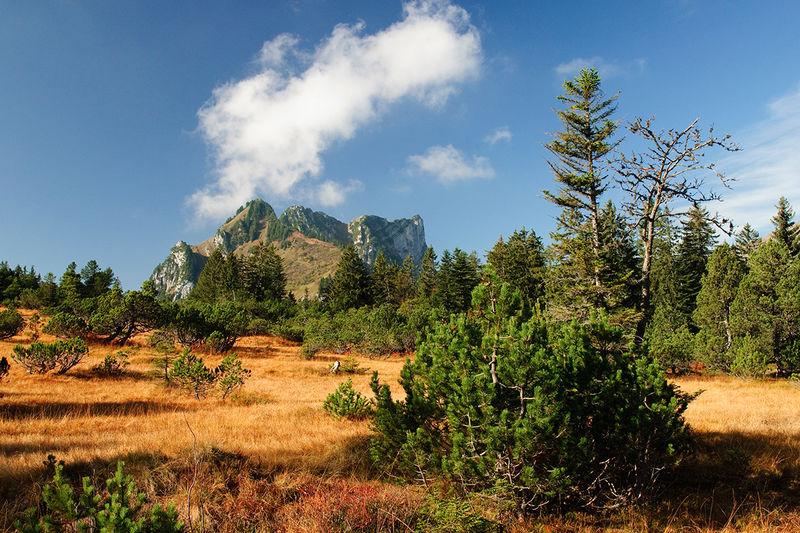 Ammler Höhenweg – das Highlight für Geniesser