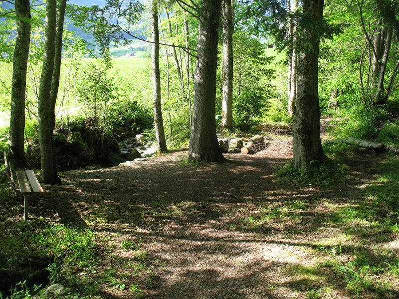 Die Feuerstelle Fallen liegt direkt am Sellbach