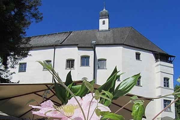 Im Vordergrund rosa Blüten. Im Hintergrund ragt das Ameranger Schloss gegen einen wolkenlos blauen Himmel.