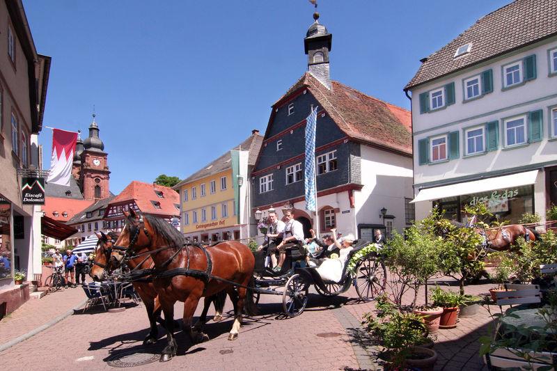 Die Altstadt von Amorbach mit dem Alten Rathaus und dem Marktplatz
