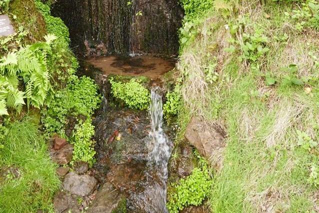 Zittenfelder Quelle