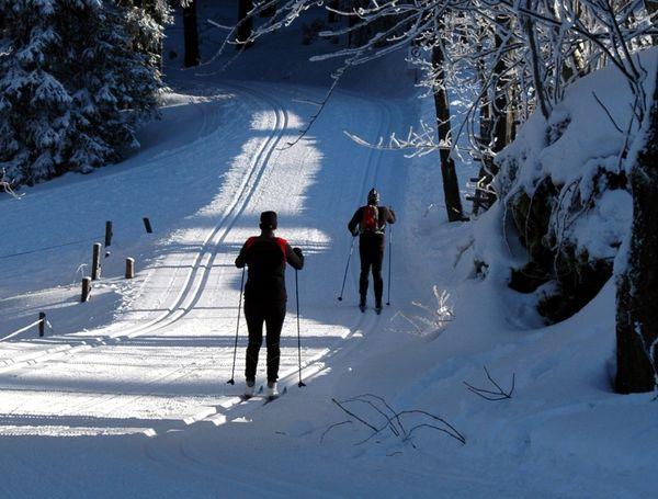Durch tief verschneite Wälder auf der Auerhahn-Höhenloipe
