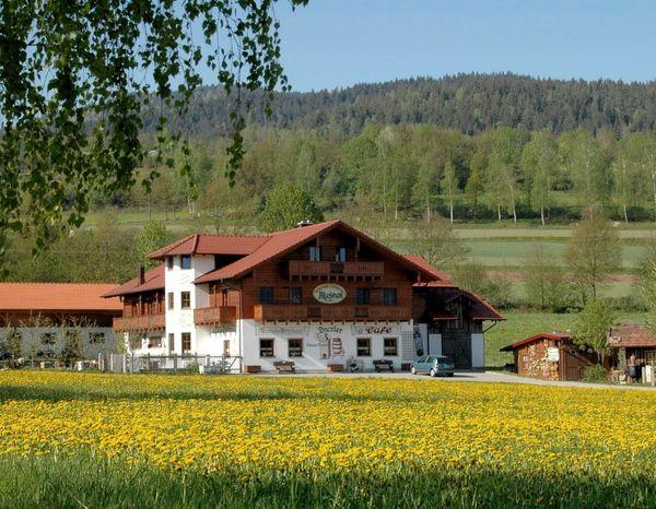 Blick auf den Drexler Hof in Arrach im Naturpark Oberer Bayerischer Wald