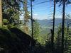 Zahlreiche Wanderwege führen auf den Kaitersberg