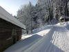 Romantische Loipe beim Wintersportzentrum Eck-Riedelstein im Bayerischen Wald