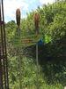 Natur-Art-Park Arrach: Arracher Moor