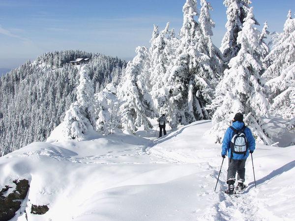 Ein besonderes Wintererlebnis: Schneeschuhwandern im Bayerischen Wald