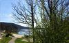 Badestelle Waldenburger Bucht