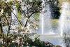 Wasserfontänen Kurpark