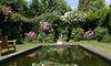 Teich im Rosengarten