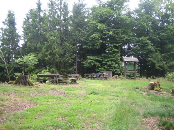 Mitten im Wald befindet sich der Rastplatz.