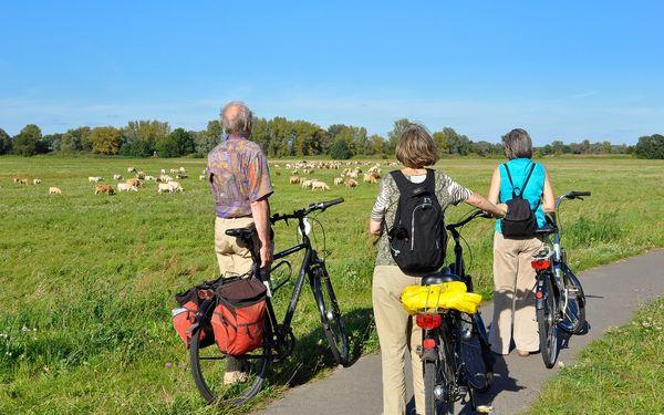 Oderbruch - Vom Berg ins Tal, Foto: Tourismusverband Seenland Oder-Spree