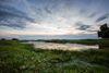 Oderbruch Landschaft, Foto: Seenland Oder-Spree/Florian Läufer