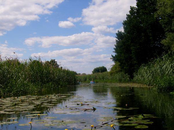 Auf der Alten Oder, Foto: Andreas Jautze