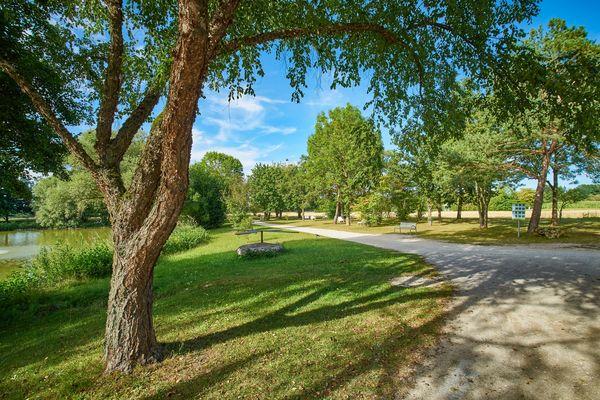 Der grüne Kurpark im neuen Kurzentrum Bad Göggings ist ein idyllisches Plätzchen zum Spazierengehen und Entspannen.