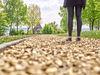 Barfußweg im Bewegungsparcours Bad Griesbach