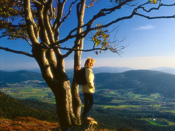 Blick vom Bergkamm Kaitersberg über Täler und Berge im Bayerischen Wald